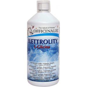 Électrolytes